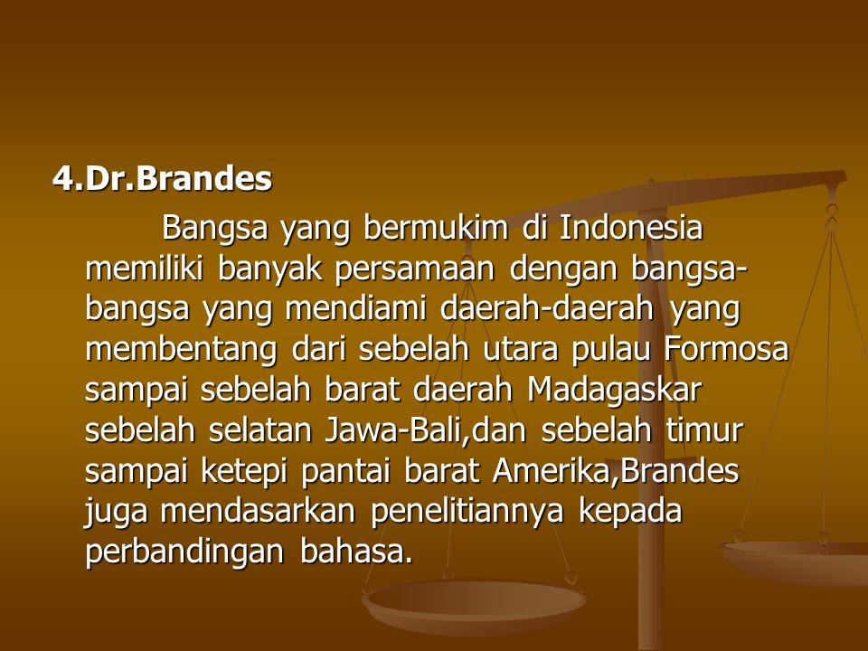 4.Dr.Brandes