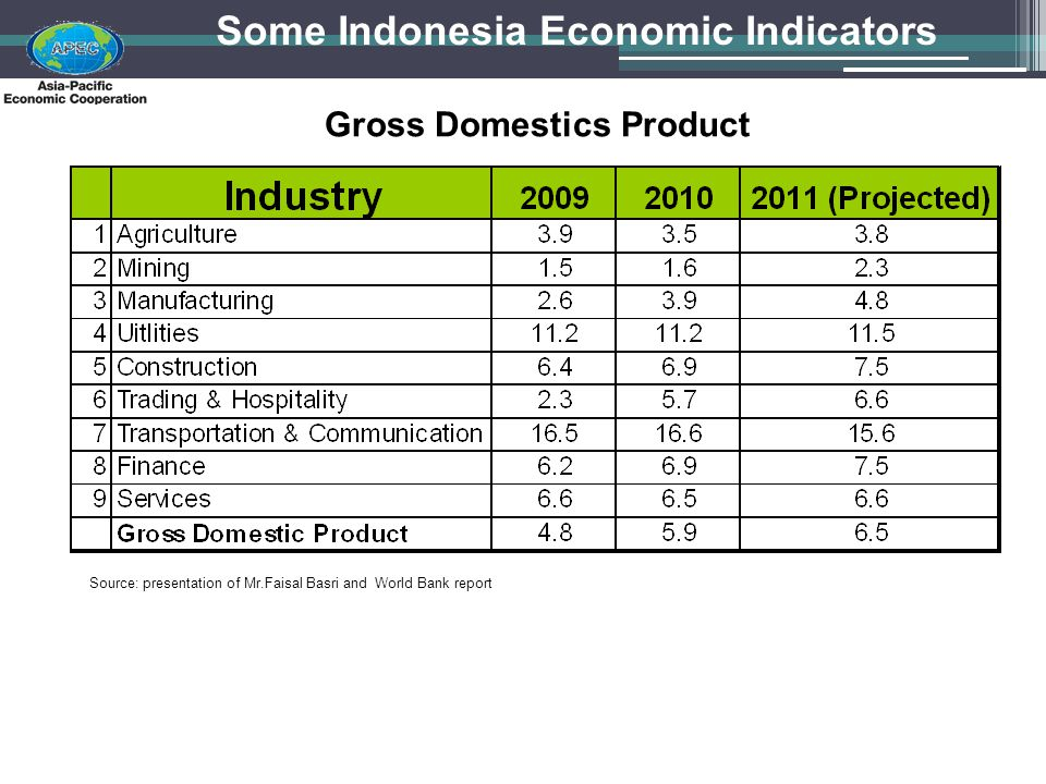 Some Indonesia Economic Indicators