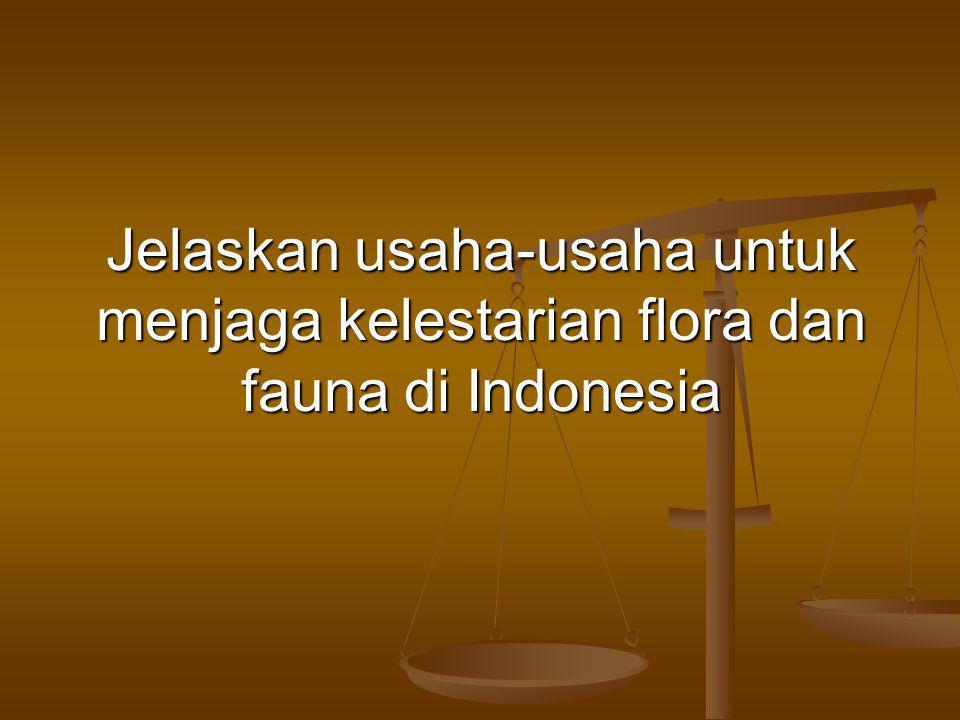 Jelaskan usaha-usaha untuk menjaga kelestarian flora dan fauna di Indonesia