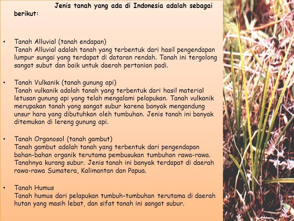 Jenis tanah yang ada di Indonesia adalah sebagai berikut: