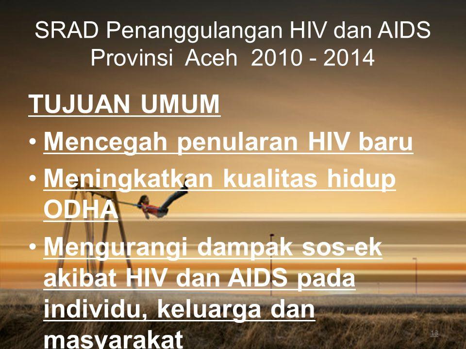 SRAD Penanggulangan HIV dan AIDS Provinsi Aceh 2010 - 2014