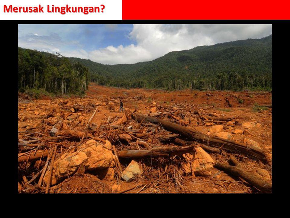Merusak Lingkungan