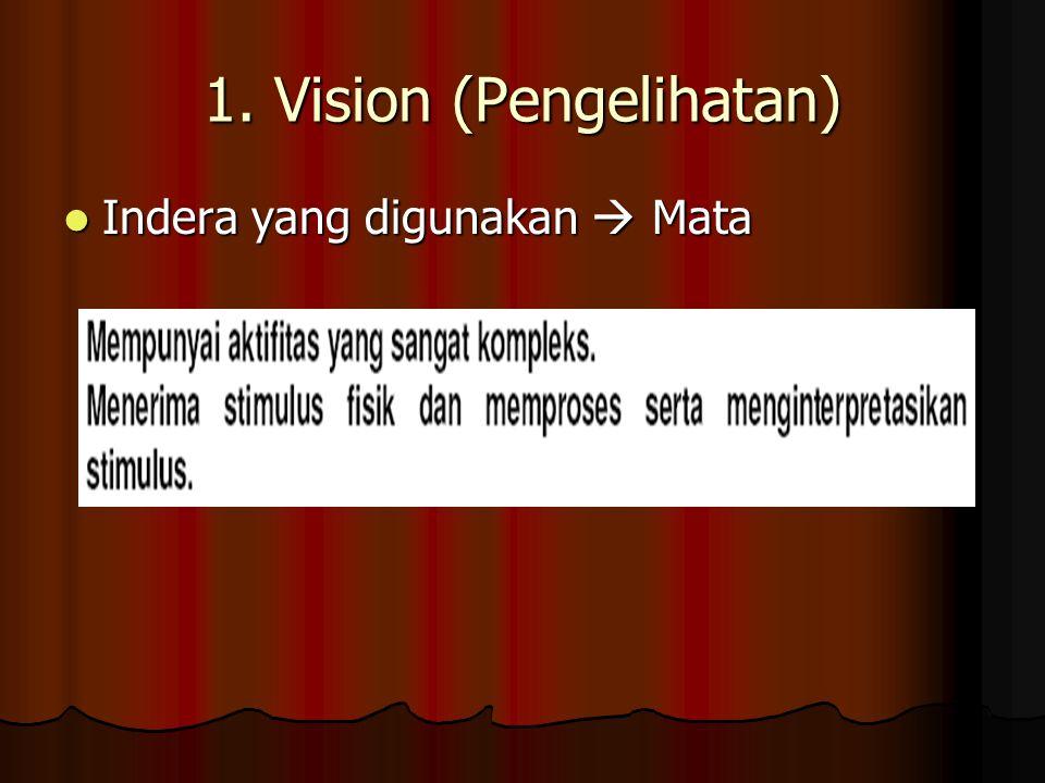 1. Vision (Pengelihatan)
