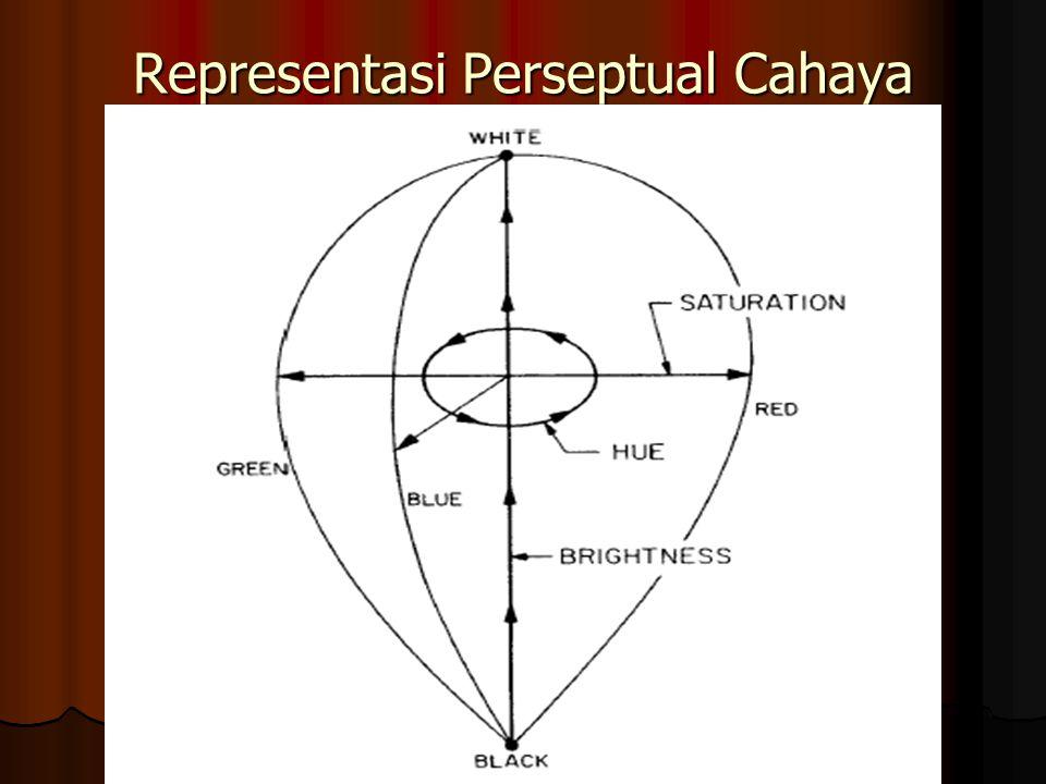 Representasi Perseptual Cahaya