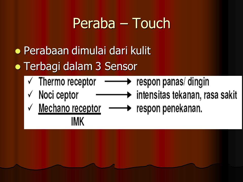 Peraba – Touch Perabaan dimulai dari kulit Terbagi dalam 3 Sensor