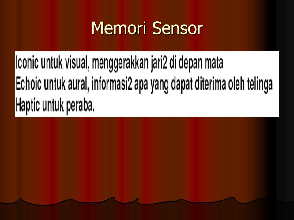 Memori Sensor
