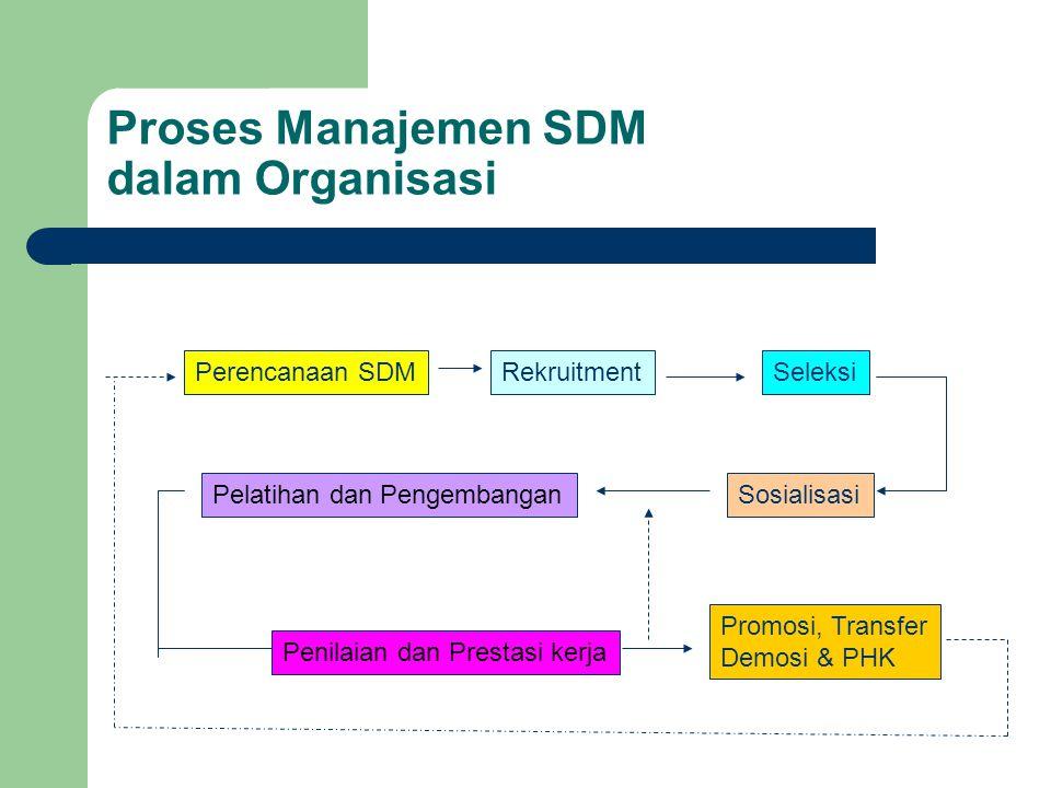 Proses Manajemen SDM dalam Organisasi
