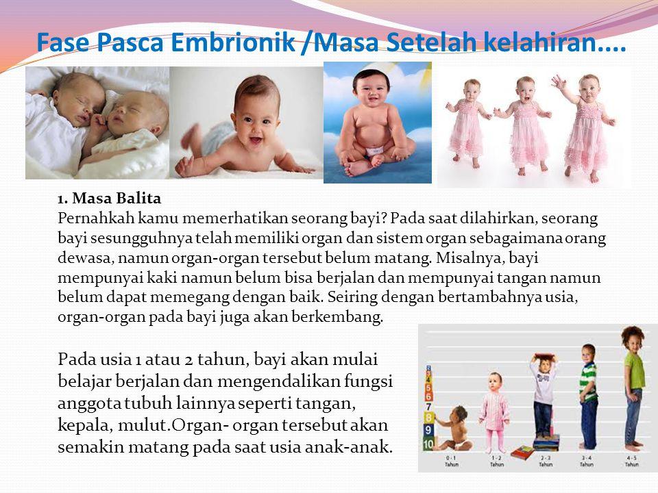 Fase Pasca Embrionik /Masa Setelah kelahiran....