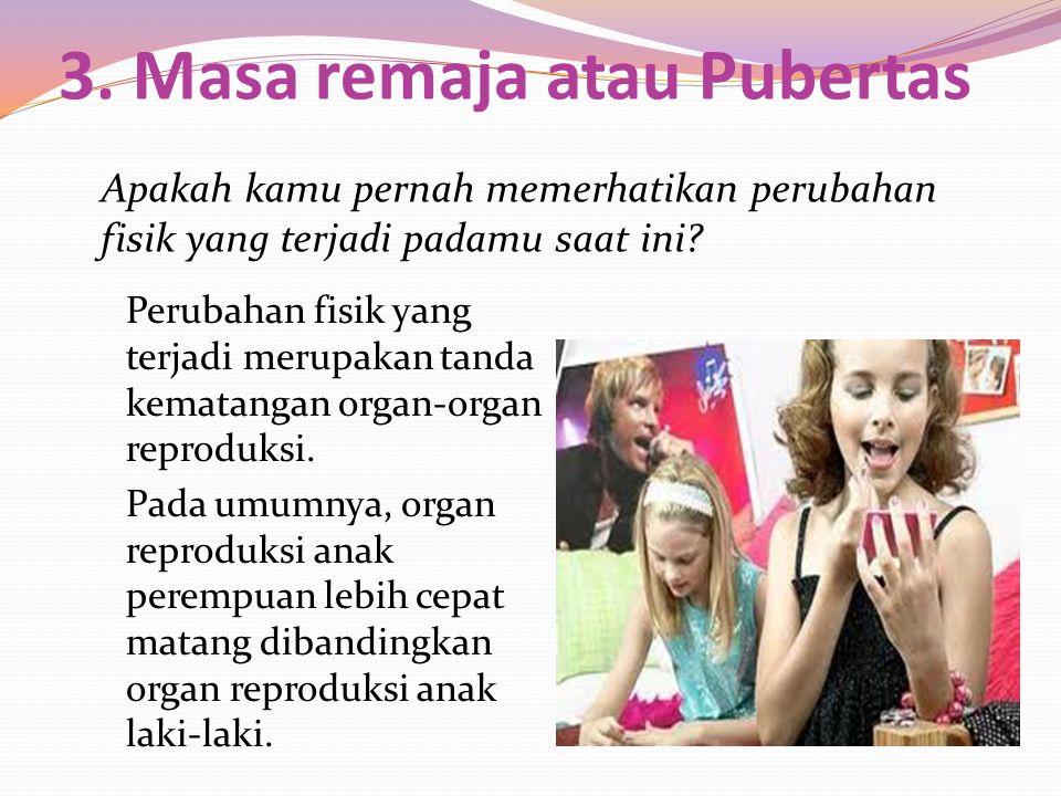 3. Masa remaja atau Pubertas