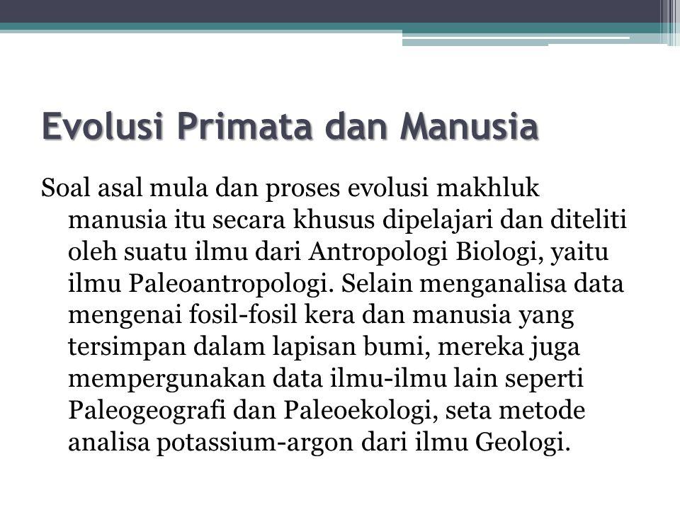 Evolusi Primata dan Manusia
