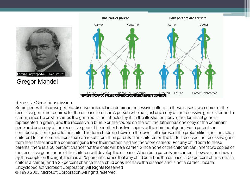 Gregor Mandel Recessive Gene Transmission