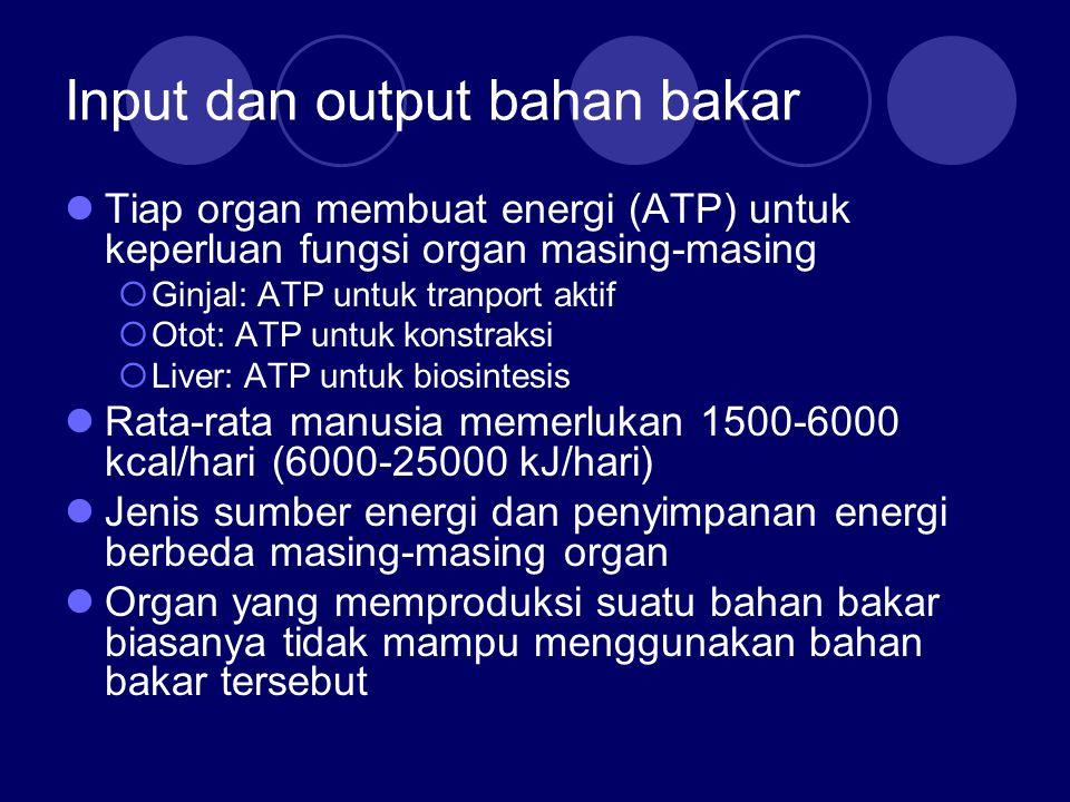 Input dan output bahan bakar