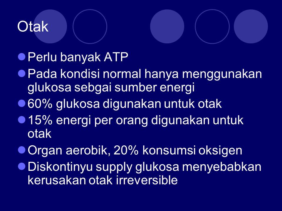 Otak Perlu banyak ATP. Pada kondisi normal hanya menggunakan glukosa sebgai sumber energi. 60% glukosa digunakan untuk otak.