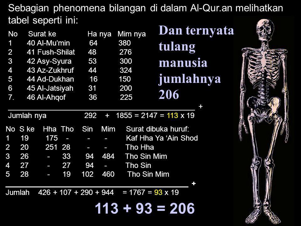 113 + 93 = 206 Dan ternyata tulang manusia jumlahnya 206