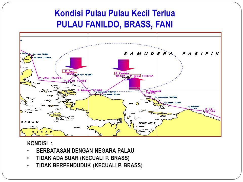 Kondisi Pulau Pulau Kecil Terlua PULAU FANILDO, BRASS, FANI