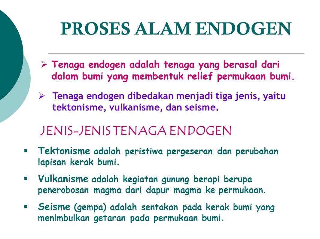 PROSES ALAM ENDOGEN JENIS-JENIS TENAGA ENDOGEN