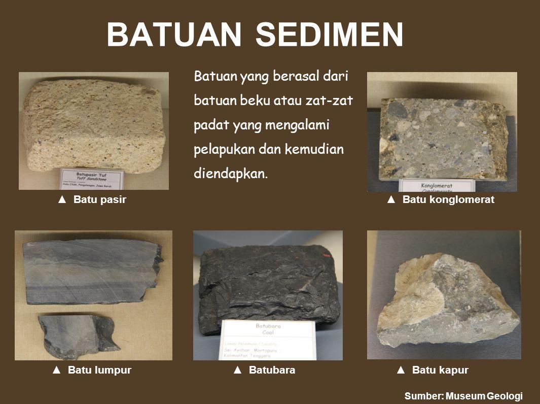 BATUAN SEDIMEN Batuan yang berasal dari batuan beku atau zat-zat padat yang mengalami pelapukan dan kemudian diendapkan.