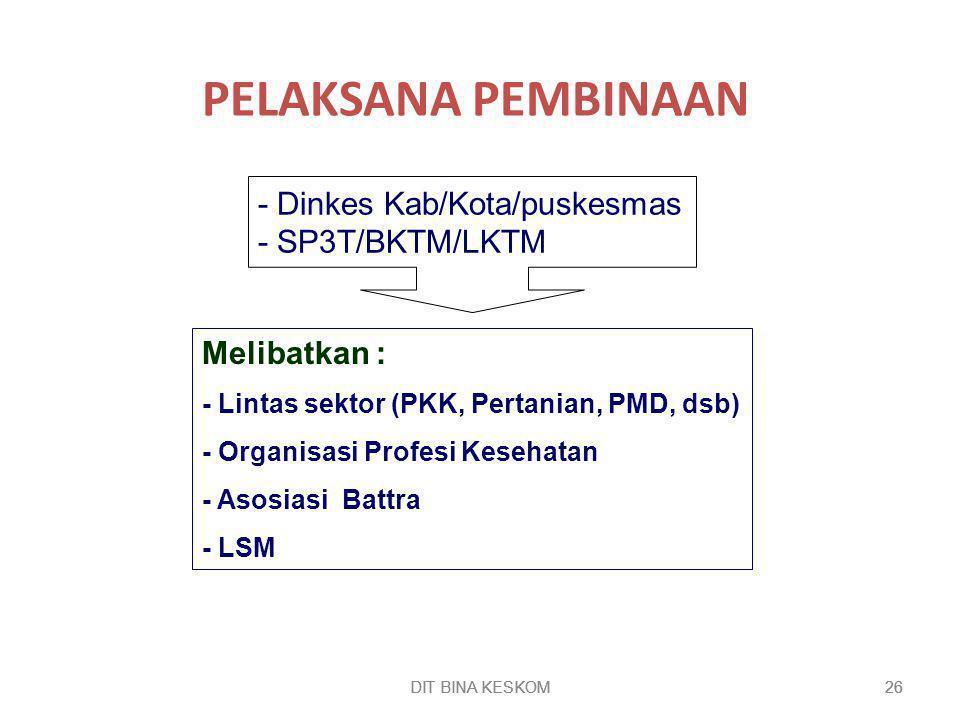 PELAKSANA PEMBINAAN - Dinkes Kab/Kota/puskesmas - SP3T/BKTM/LKTM