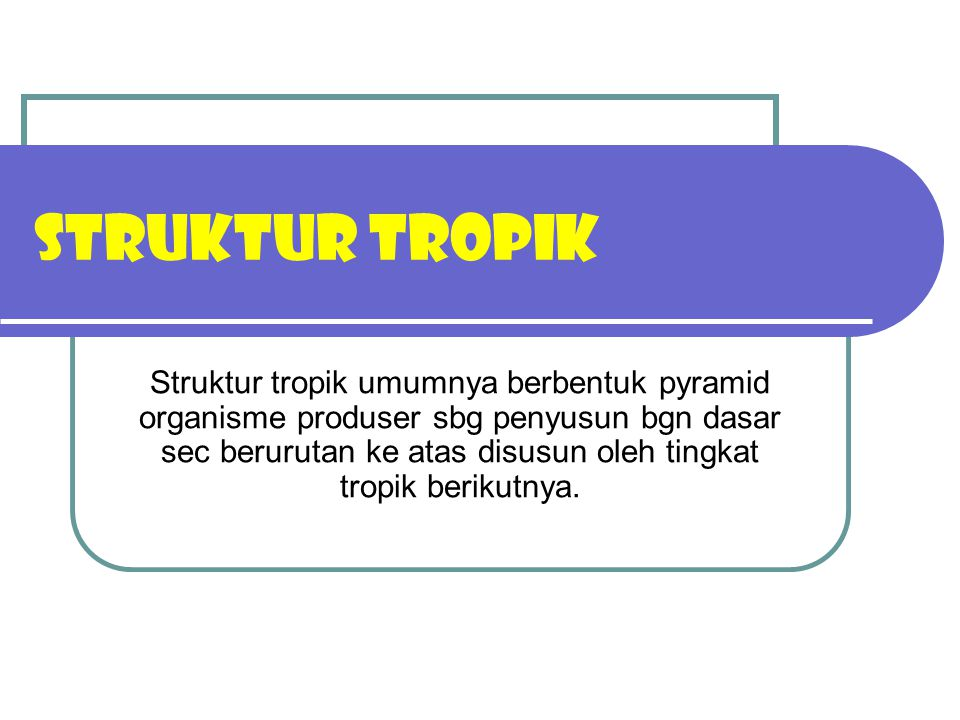 STRUKTUR TROPIK