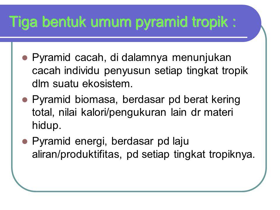 Tiga bentuk umum pyramid tropik :