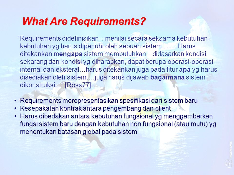 What Are Requirements