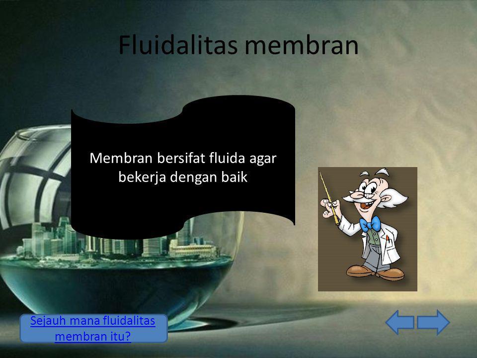 Fluidalitas membran Membran bersifat fluida agar bekerja dengan baik