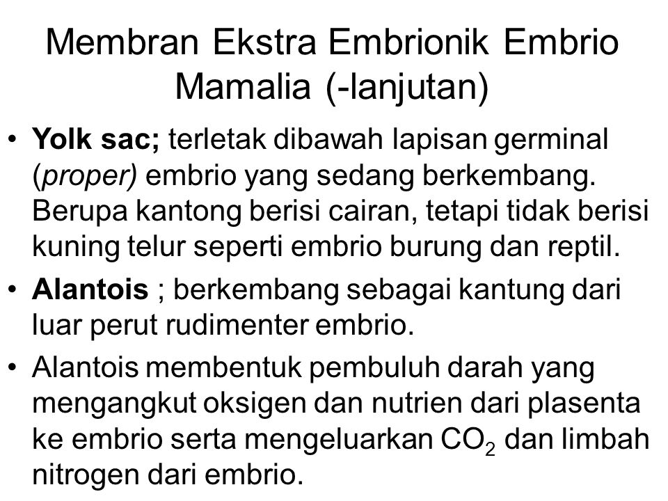 Membran Ekstra Embrionik Embrio Mamalia (-lanjutan)