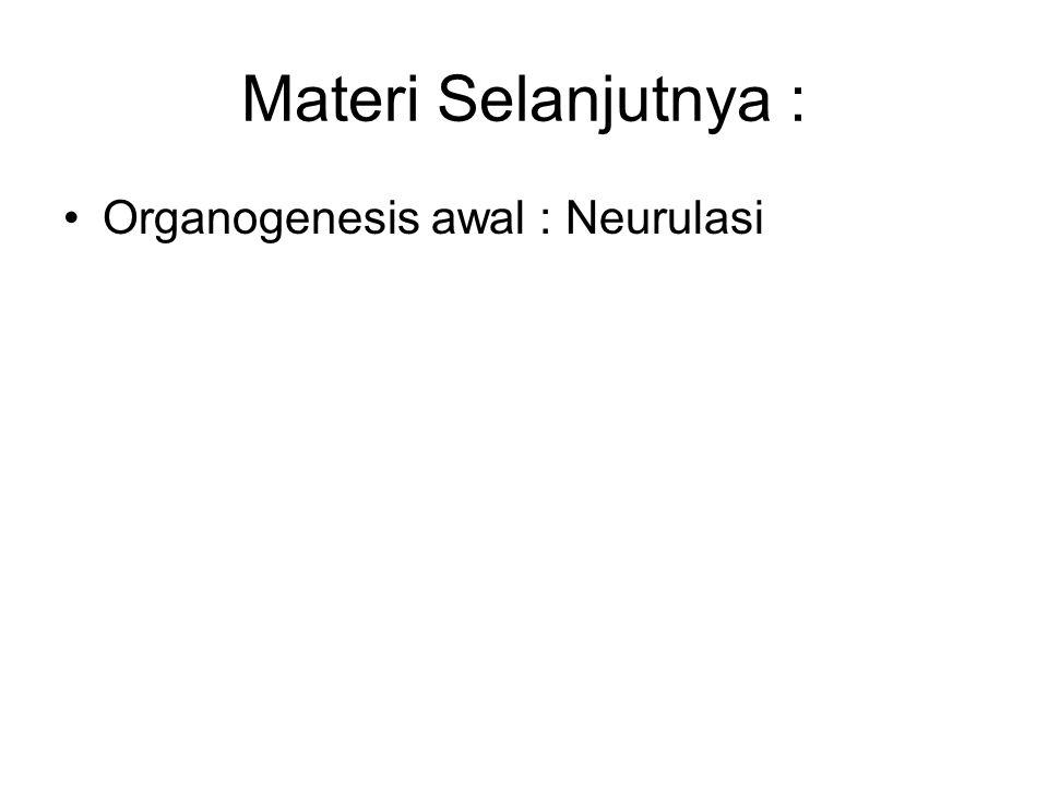 Materi Selanjutnya : Organogenesis awal : Neurulasi