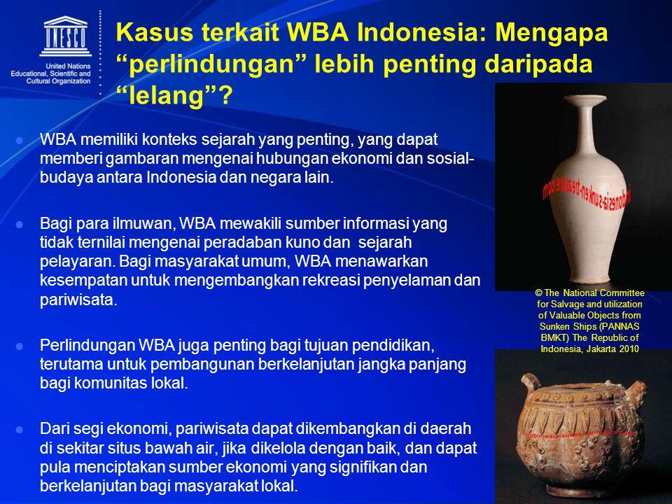 Kasus terkait WBA Indonesia: Mengapa perlindungan lebih penting daripada lelang