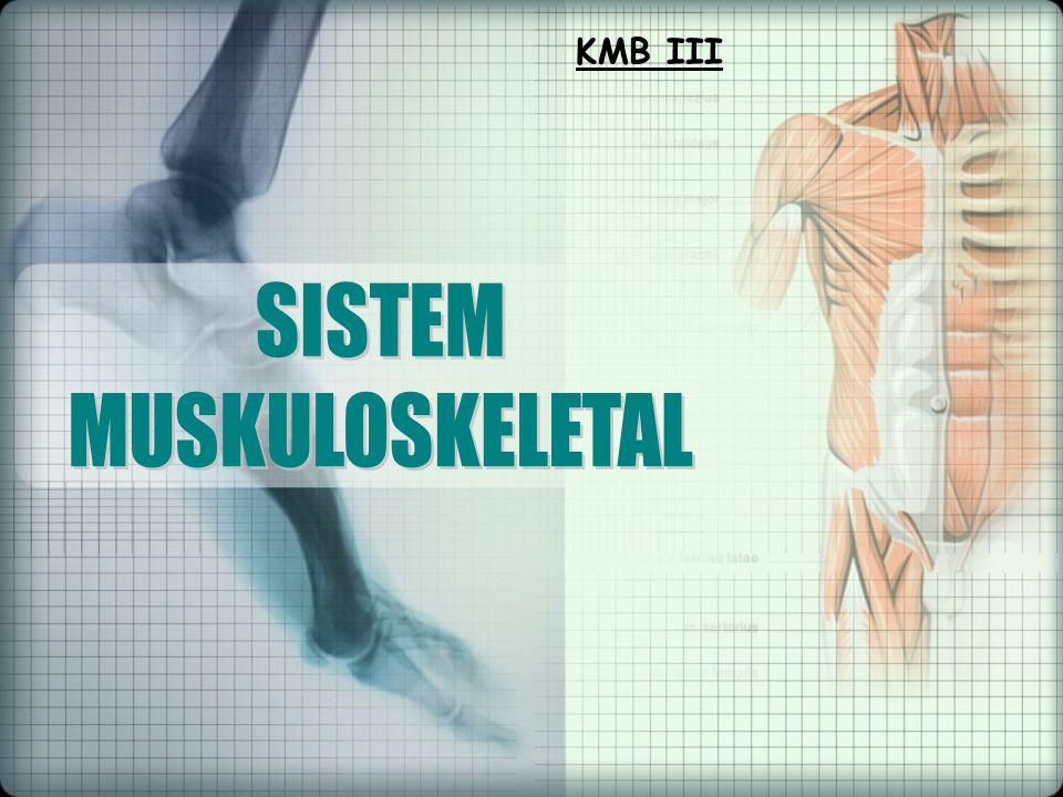 KMB III SISTEM MUSKULOSKELETAL