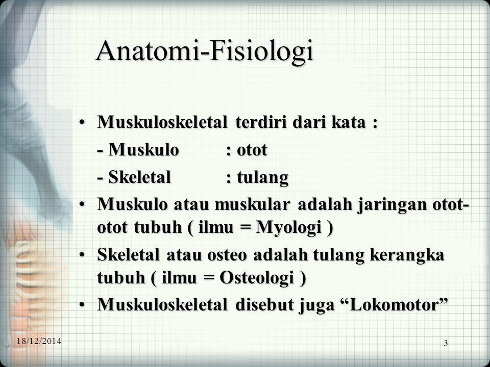 Anatomi-Fisiologi Muskuloskeletal terdiri dari kata : - Muskulo : otot