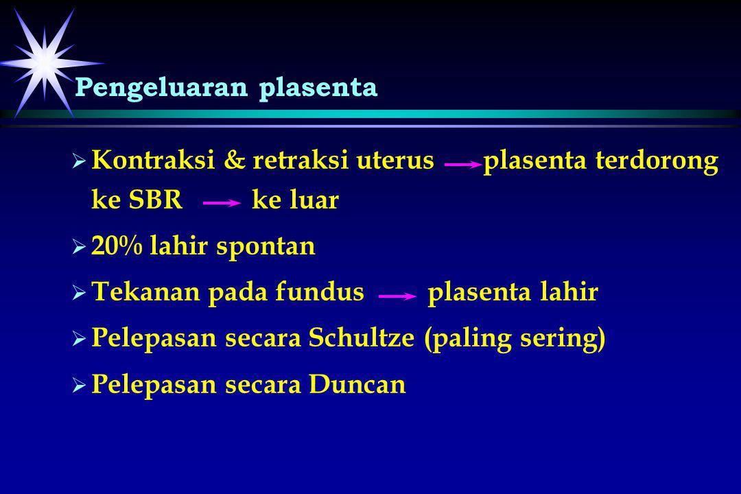 Pengeluaran plasenta Kontraksi & retraksi uterus plasenta terdorong ke SBR ke luar. 20% lahir spontan.