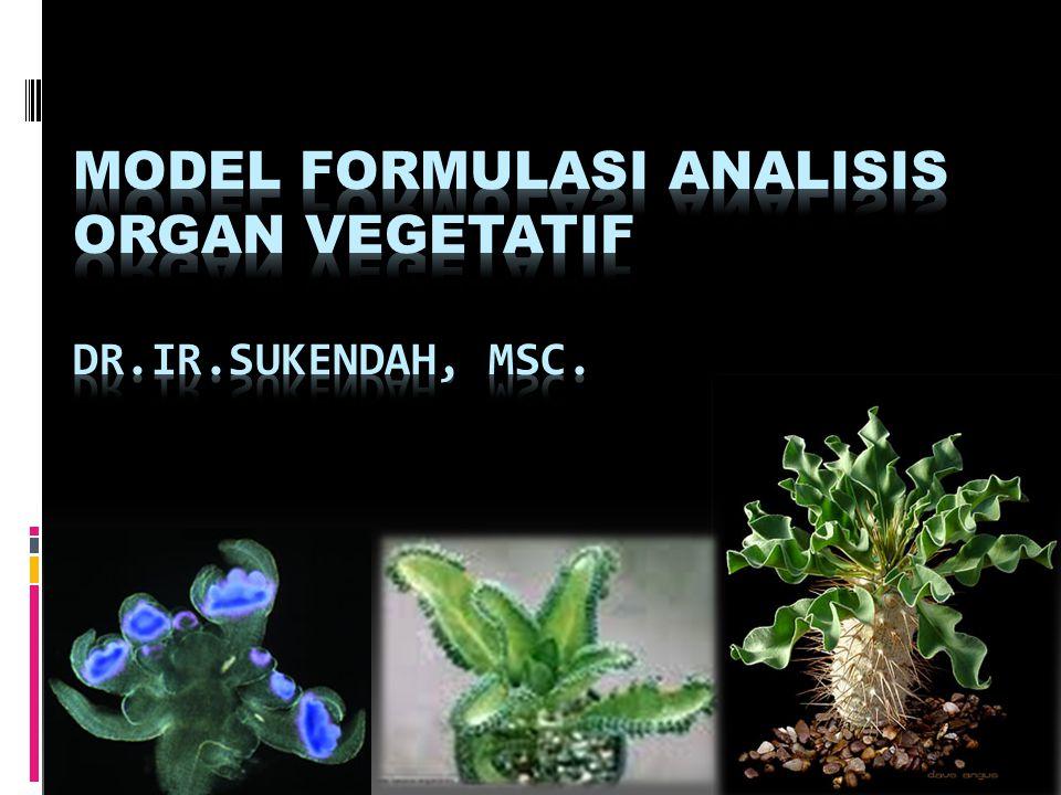 MODEL FORMULASI ANALISIS ORGAN VEGETATIF Dr.Ir.Sukendah, MSc.