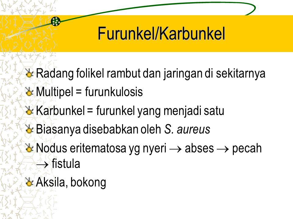 Furunkel/Karbunkel Radang folikel rambut dan jaringan di sekitarnya