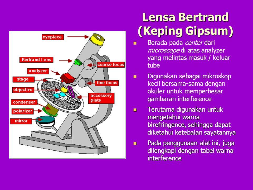 Lensa Bertrand (Keping Gipsum)