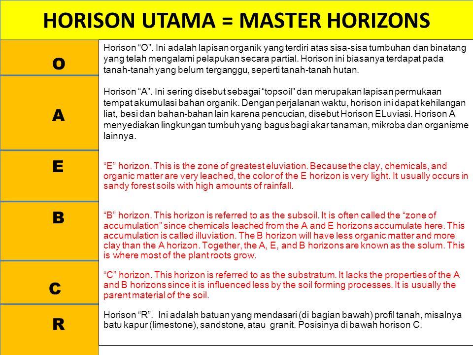 HORISON UTAMA = MASTER HORIZONS