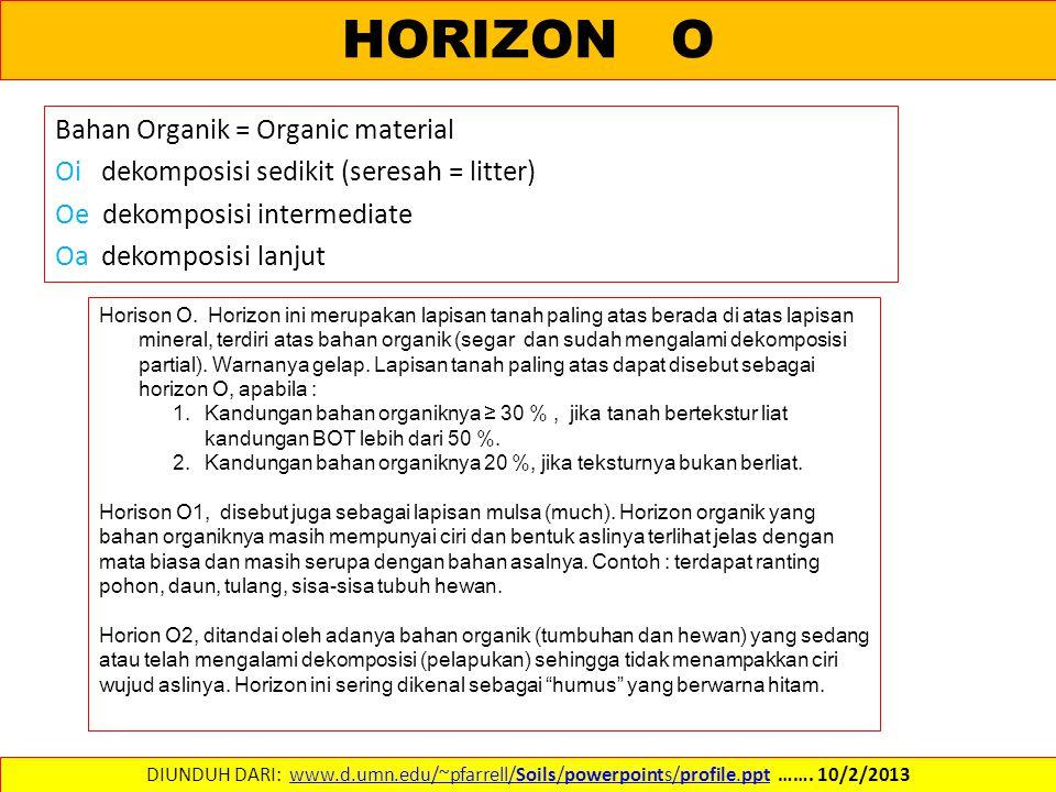 HORIZON O Bahan Organik = Organic material Oi dekomposisi sedikit (seresah = litter) Oe dekomposisi intermediate Oa dekomposisi lanjut