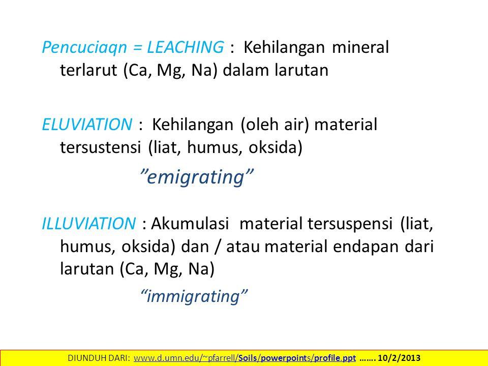 Pencuciaqn = LEACHING : Kehilangan mineral terlarut (Ca, Mg, Na) dalam larutan ELUVIATION : Kehilangan (oleh air) material tersustensi (liat, humus, oksida) emigrating ILLUVIATION : Akumulasi material tersuspensi (liat, humus, oksida) dan / atau material endapan dari larutan (Ca, Mg, Na) immigrating