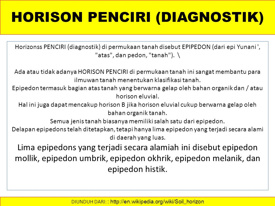 HORISON PENCIRI (DIAGNOSTIK)
