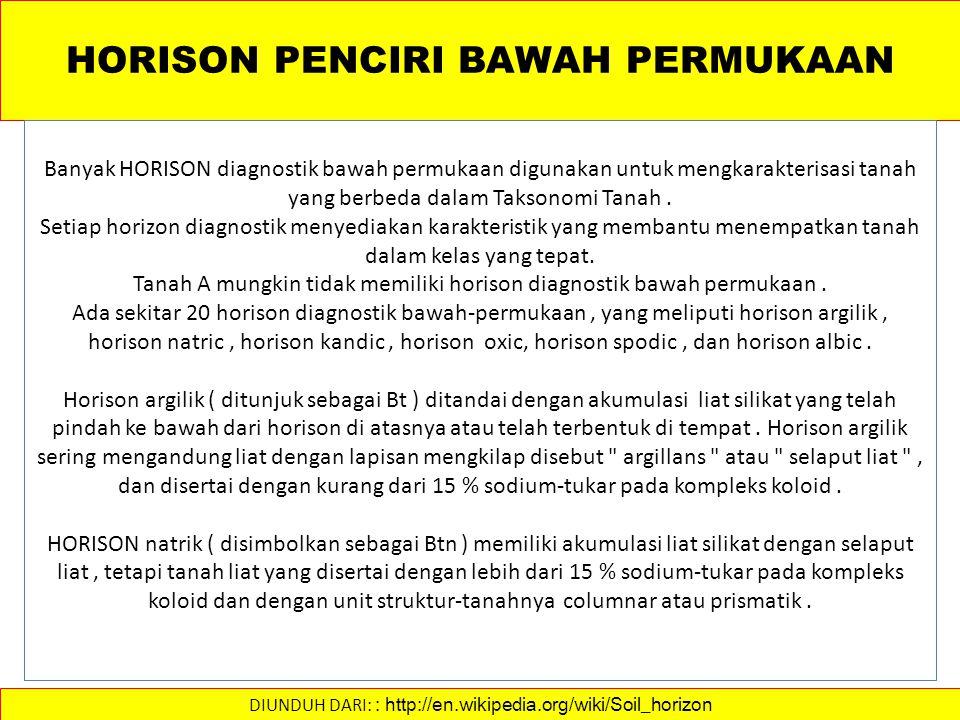 HORISON PENCIRI BAWAH PERMUKAAN
