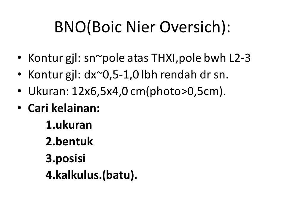 BNO(Boic Nier Oversich):