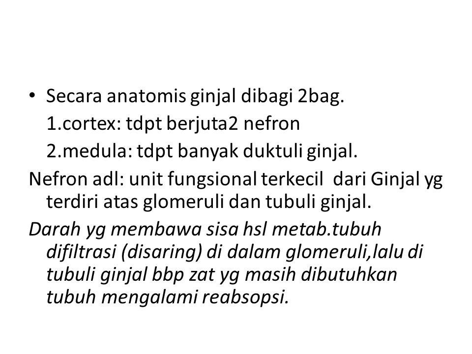 Secara anatomis ginjal dibagi 2bag.
