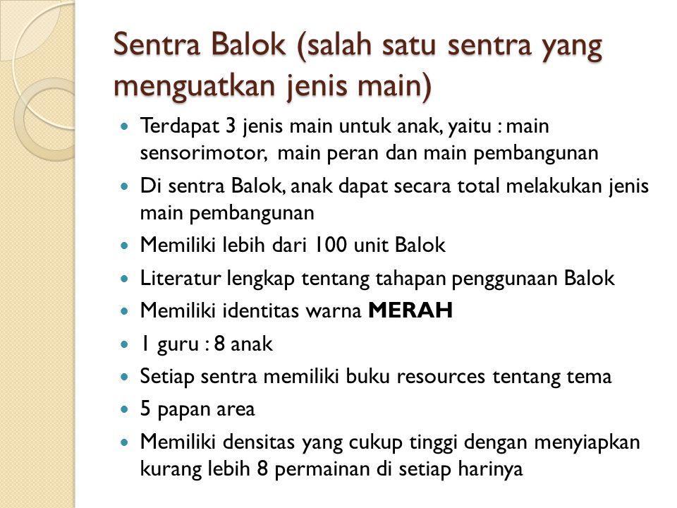Sentra Balok (salah satu sentra yang menguatkan jenis main)