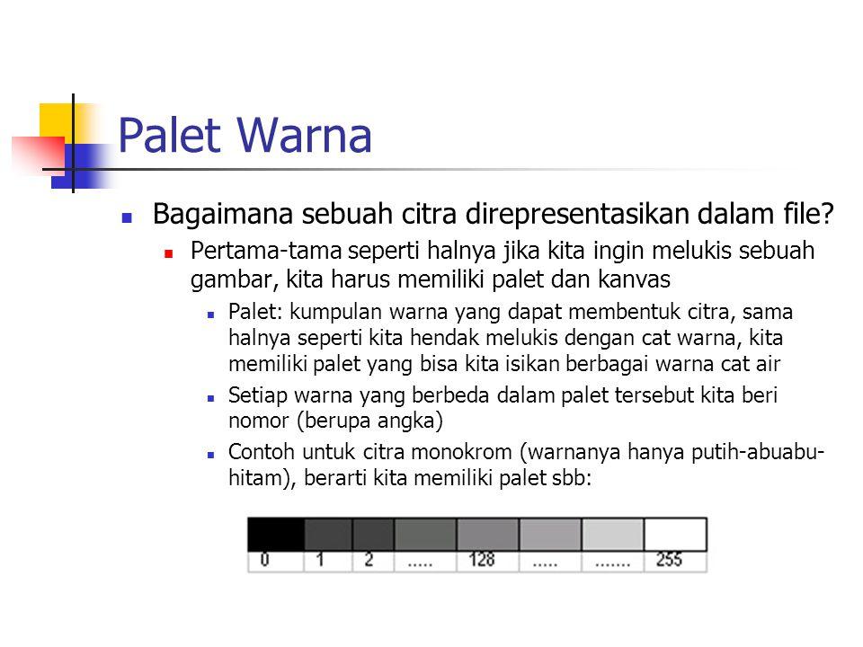 Palet Warna Bagaimana sebuah citra direpresentasikan dalam file
