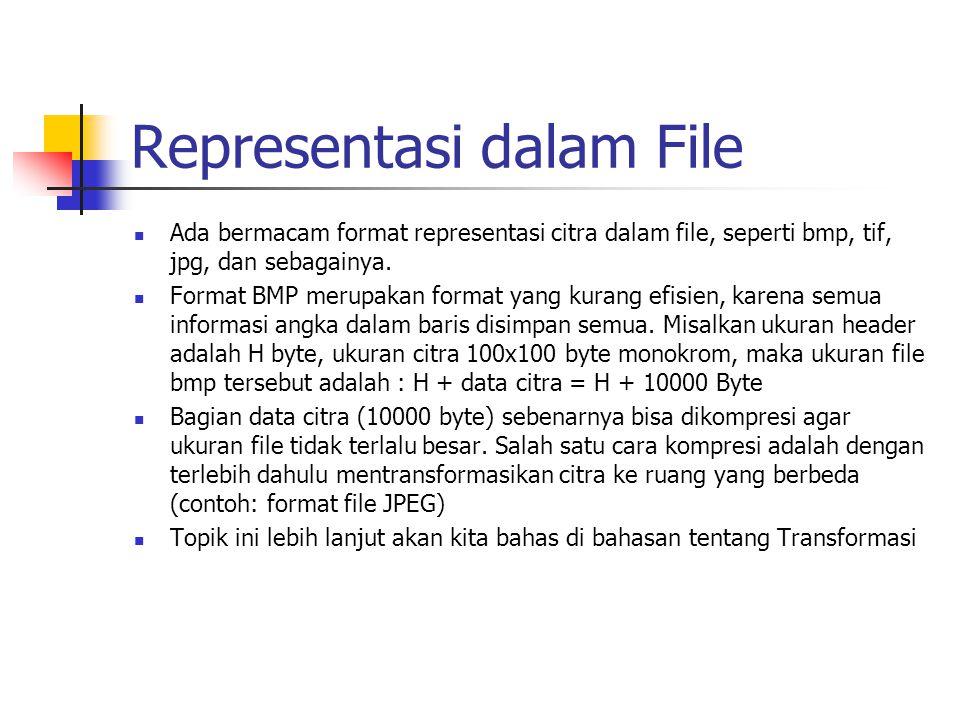 Representasi dalam File