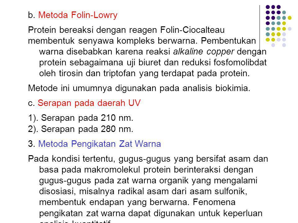 b. Metoda Folin-Lowry Protein bereaksi dengan reagen Folin-Ciocalteau.