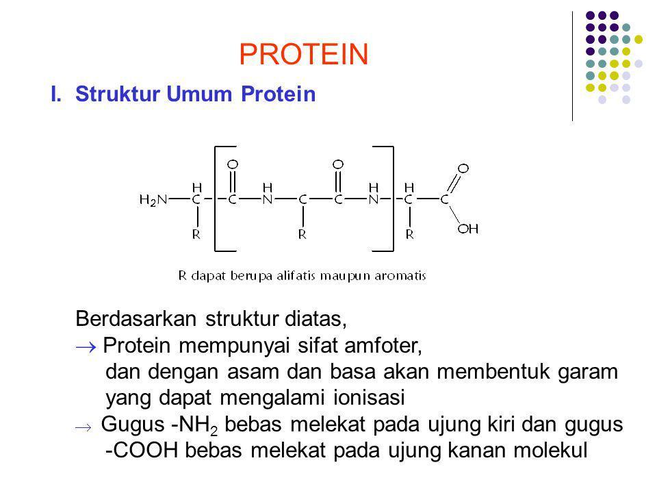 PROTEIN I. Struktur Umum Protein Berdasarkan struktur diatas,