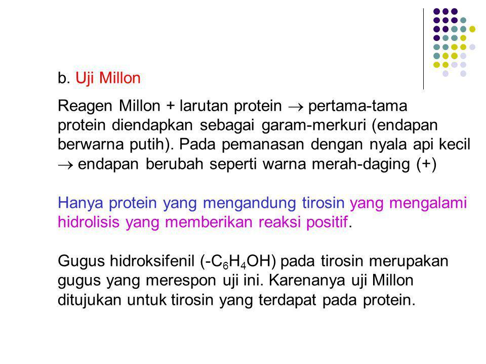 b. Uji Millon Reagen Millon + larutan protein  pertama-tama. protein diendapkan sebagai garam-merkuri (endapan.