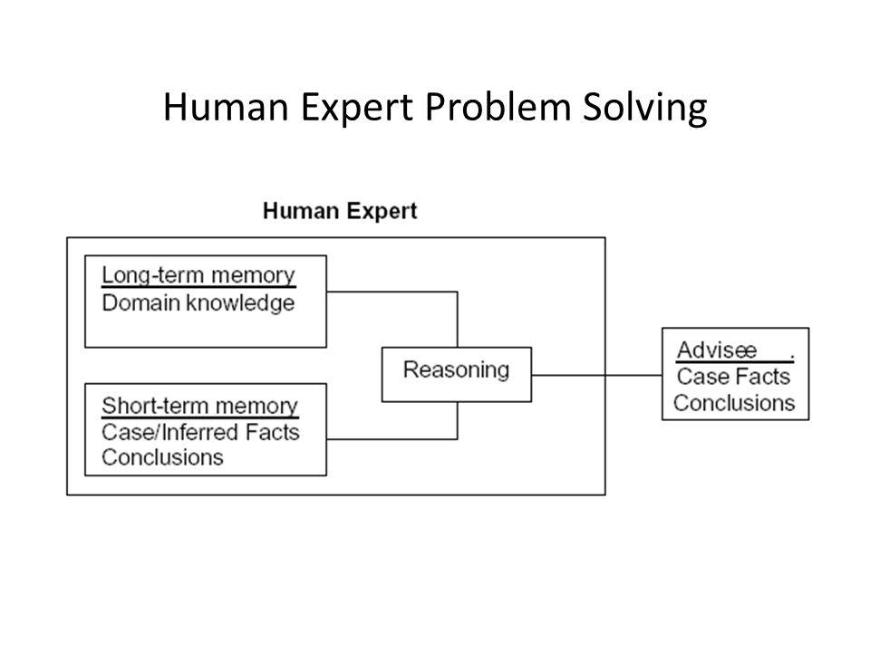 Human Expert Problem Solving