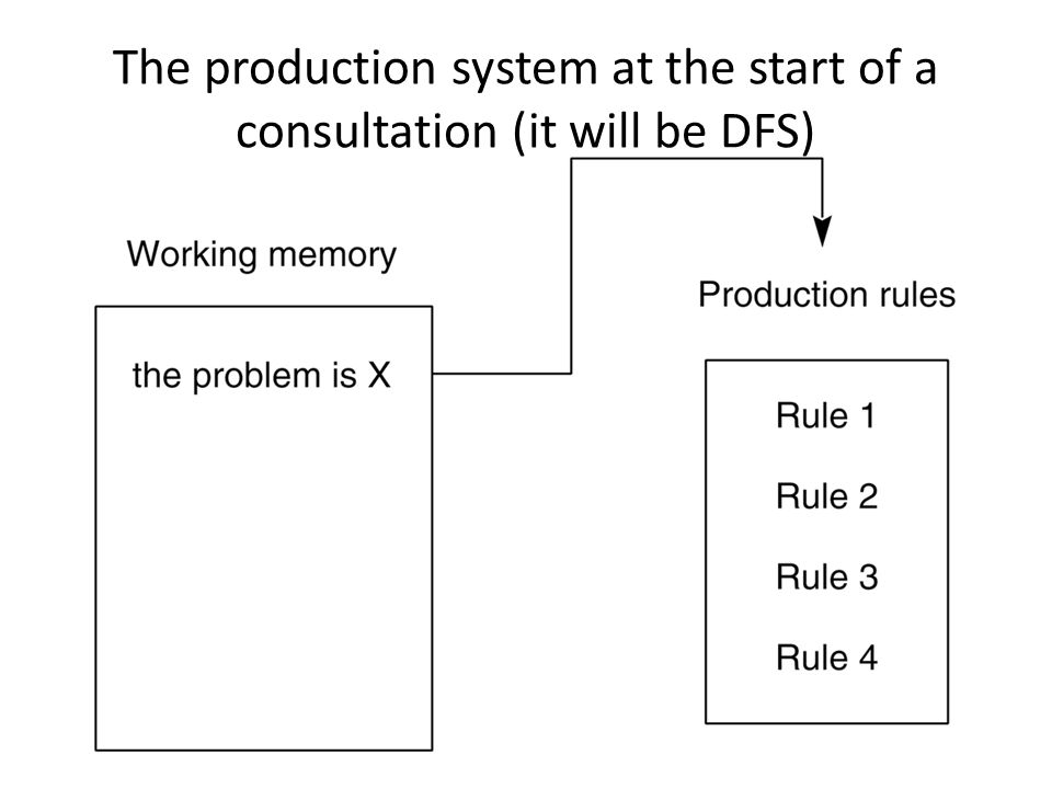 The production system at the start of a consultation (it will be DFS)